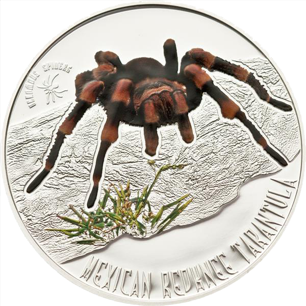 nu1103_niue_2012_mexican_spider_r.png